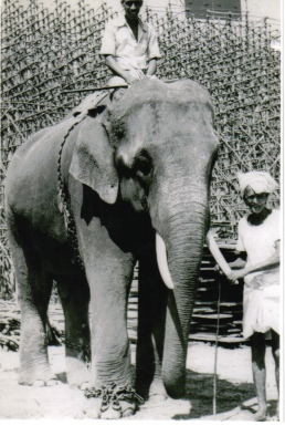Ramachandran as Thrissur Ganeshan in 1982, before being bought to Thechikkottukavu Temple